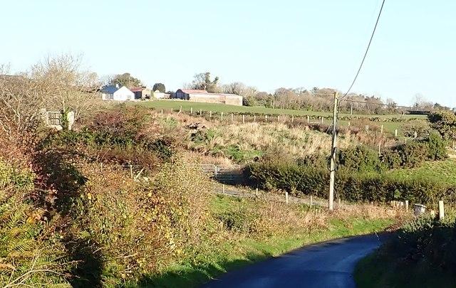 Homestead on the Drumgavlin Road