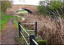 SP7189 : Johnson's Bridge No 7 by Mat Fascione
