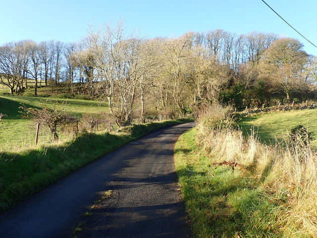 Decidious woodland at a sharp bend on the ascending Mountain Road