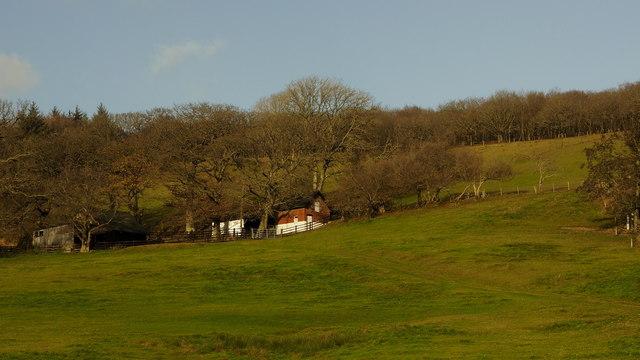 Buildings on the hillside