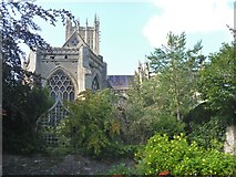 ST5545 : Bishop's Palace, Wells [24] by Michael Dibb