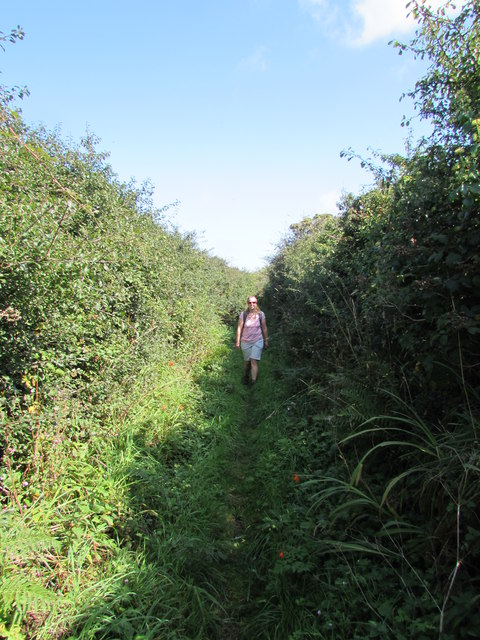 Once you get past Trengothal the bridleway becomes rather narrow