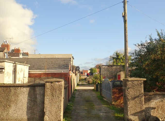 Back alley of a terrace of houses on Castletown Road