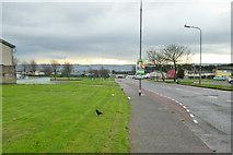 W6572 : Knocknaheeny Avenue, Cork 3 by Robin Webster