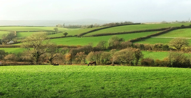 Charford Brook valley