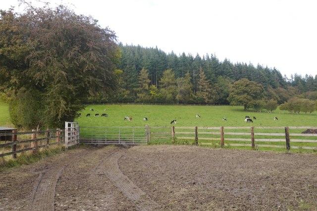 Farmland, Aston