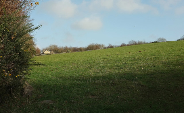 Field by Elwell Cottage