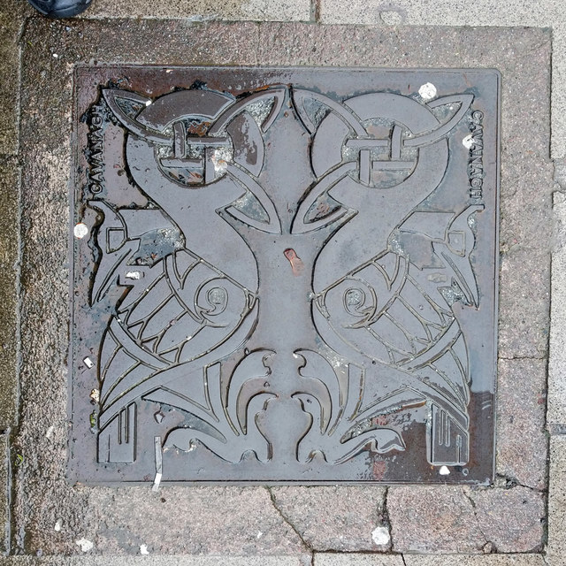 Inspection cover, Western Road, Cork 1