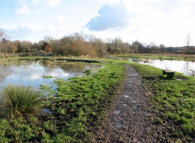 Muddy path on Marston Marsh