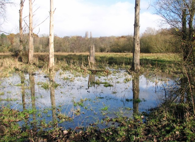 Marston Marsh partially flooded