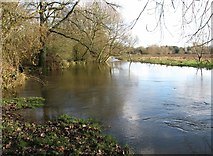 TG2105 : The River Yare traversing Marston Marsh by Evelyn Simak
