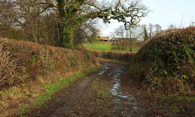 Green lane, Charford
