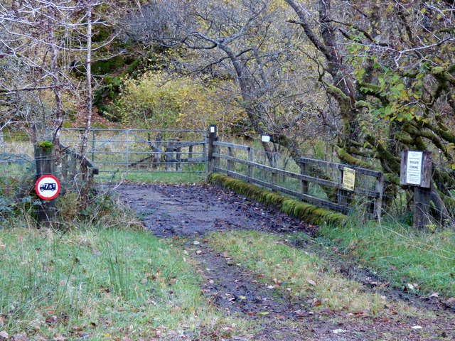 Bridge to Hilary's Wood