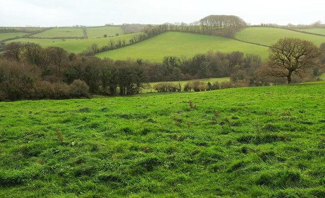 Valley below North Huish