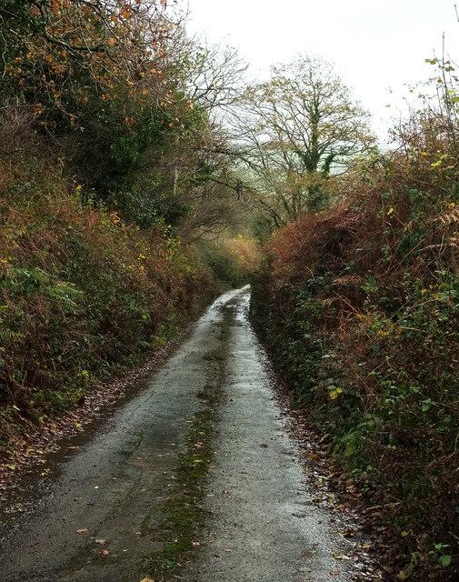 Lane from North Huish Cross