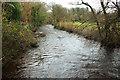 SX7257 : River Avon by Derek Harper