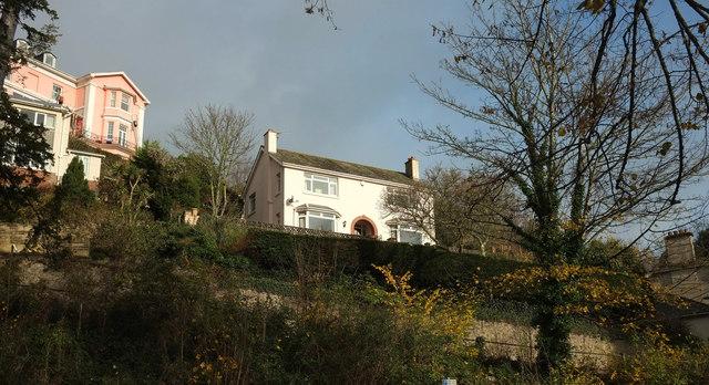 Houses above Lymington Road, Torquay