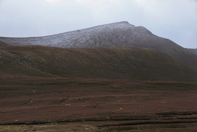 The Sneug from Burns, Foula