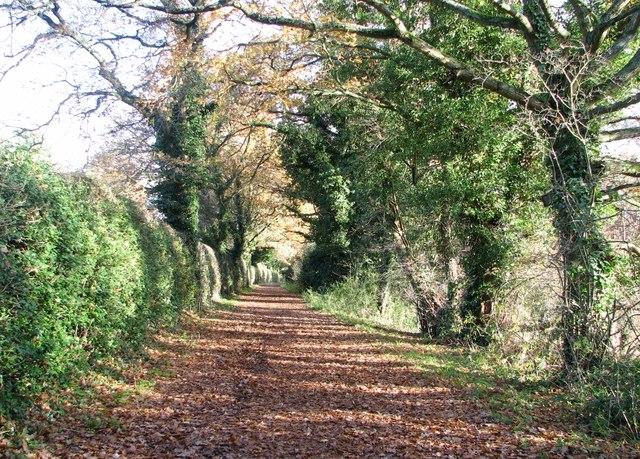 View along Marston Lane