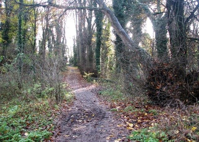 This way to Marston Lane