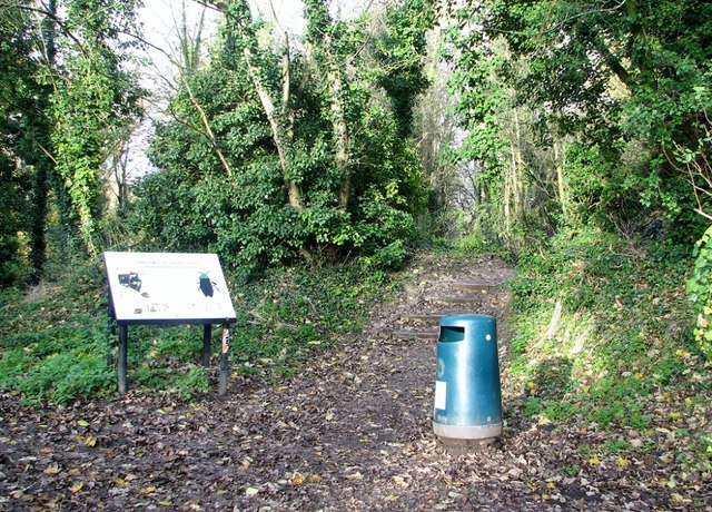 Litter bin and information board by the entrance to Danby Wood