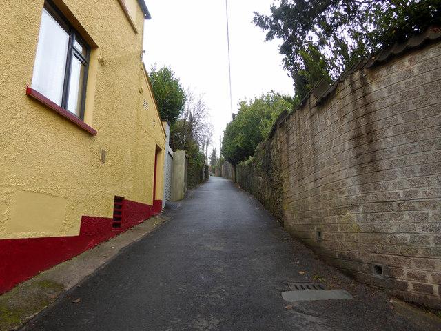 Buckston Hill, Cork 3
