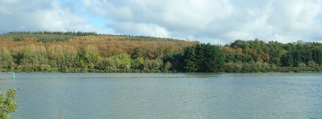 The Narrow Water Forest viewed across the Newry River