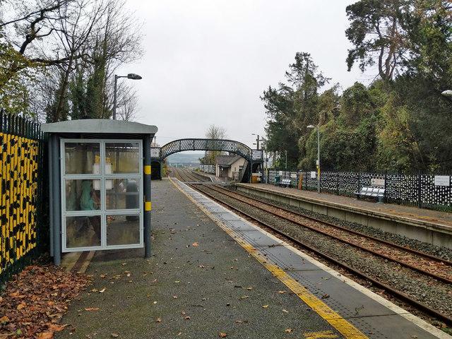 Fota station