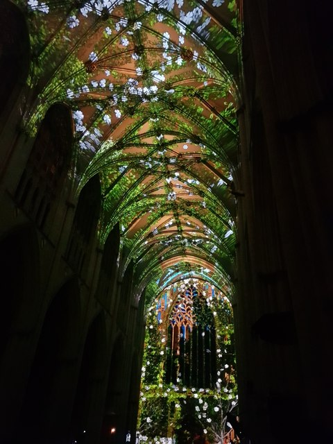 Illuminated Minster - Rose Arch