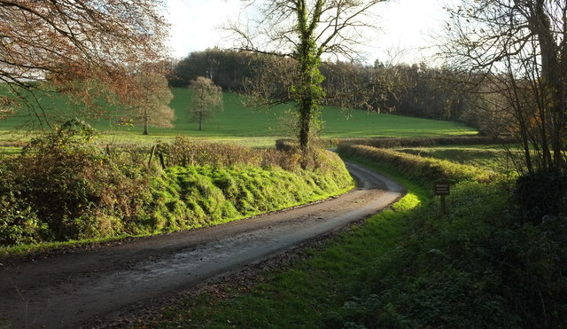 Drive to Bulworthy Forest Lodges