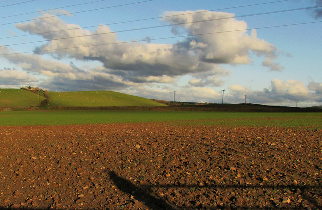 Arable field near Horwood Cross