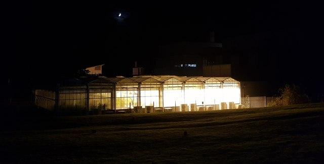 Biology greenhouses at night