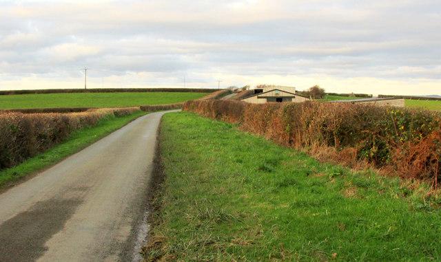 Lane to Litchardon Cross
