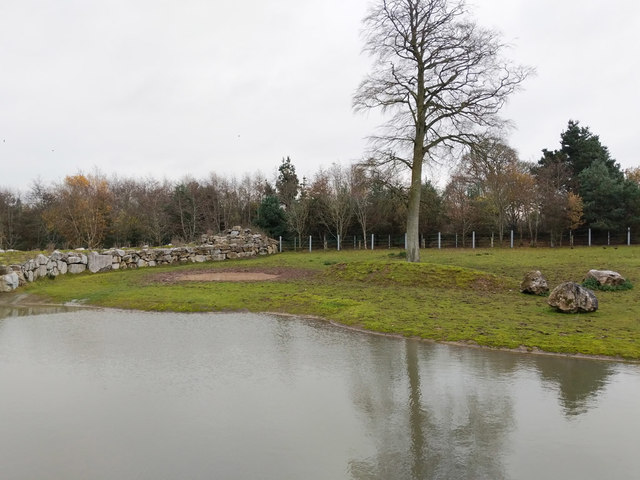 Asian plains paddock, Fota Wildlife Park