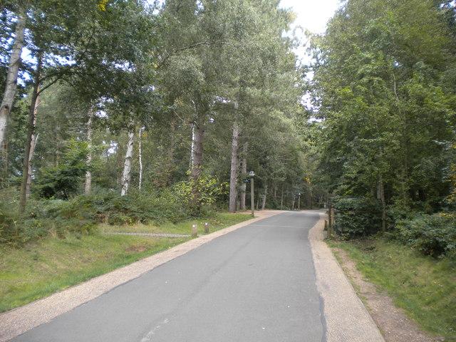 Internal roadway, Center Parcs Sherwood Forest (3)