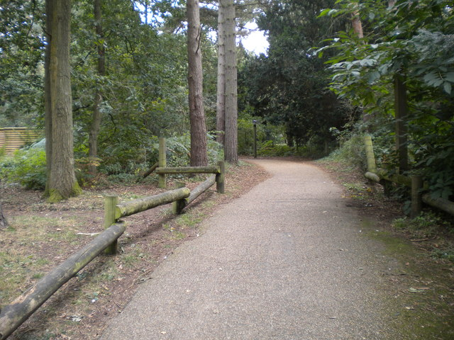 Footpath, Center Parcs Sherwood Forest
