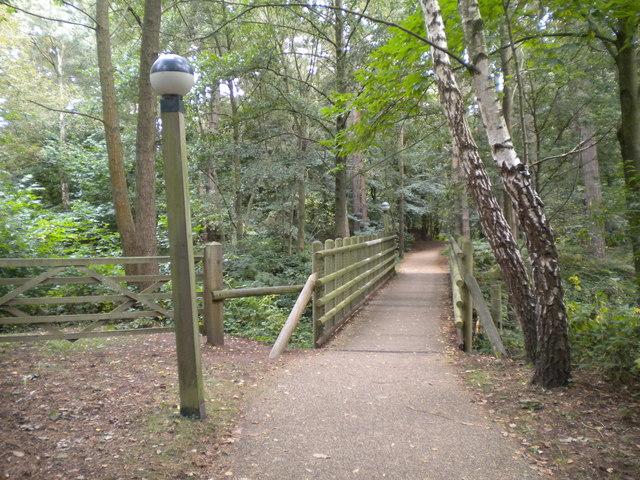 Footbridge, Center Parcs Sherwood Forest
