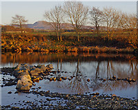 SD6074 : River Lune near Whittingham by Ian Taylor