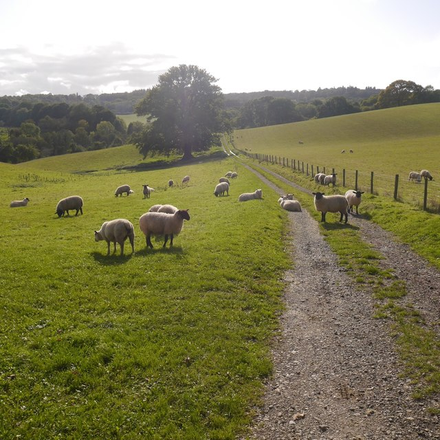 Farm road,  Whitbourne