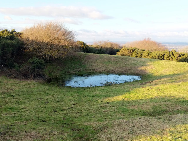 Pond, South Downs