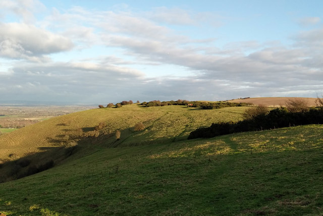 View east along South Downs