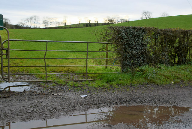 Gate and countryside, Tullyheeran