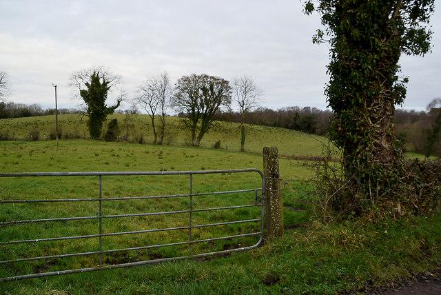 Gate, Tullyrush
