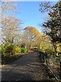 NZ2561 : Autumn colours in the park by Robert Graham