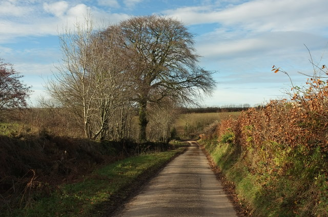 Lane near Higher Eastcott Farm