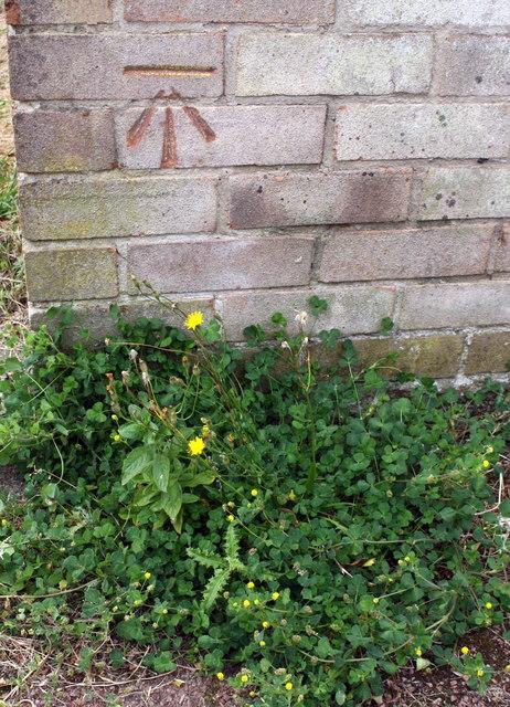Benchmark on Wimborne Walk garage block