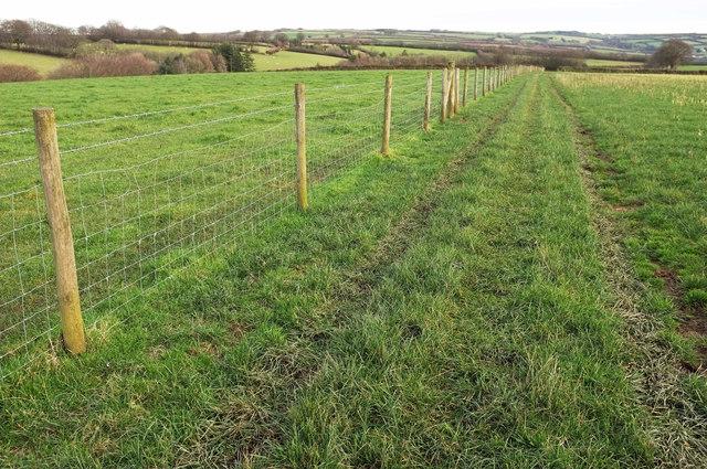 Footpath to Gupworthy Farm