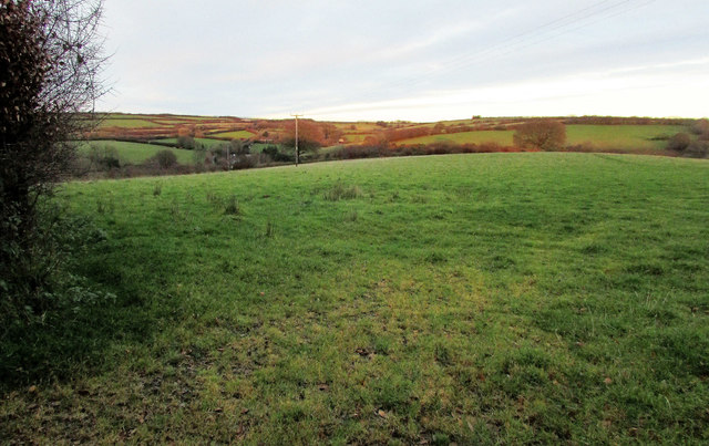 Field by Stolford Hill
