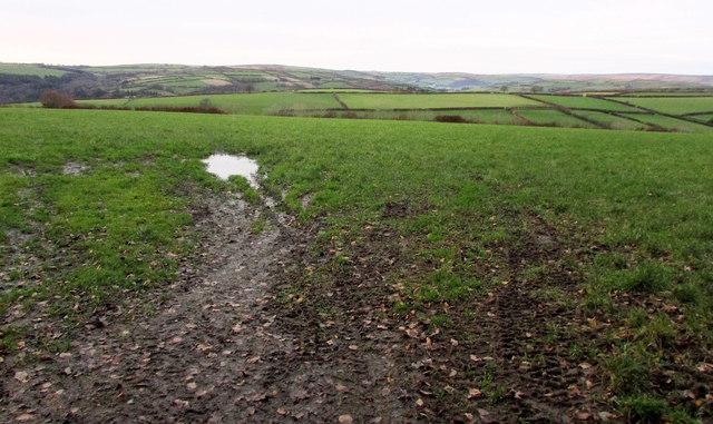Field north of Joyce's Farm