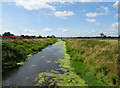 ST4264 : The River Yeo near Congresbury by JThomas